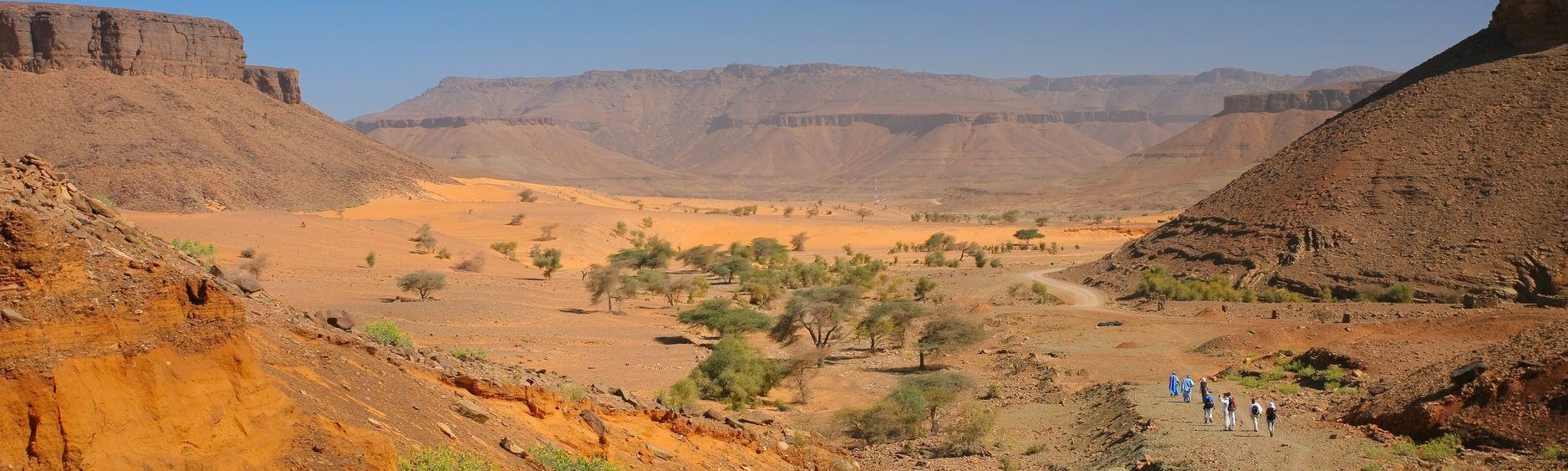 mauritanie guide de voyage mauritanie routard com rh routard com mauritanie gpl mauritanie pharma