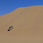 Dunes Sandwich Harbour