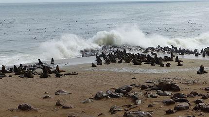 Il y a foule sur la plage