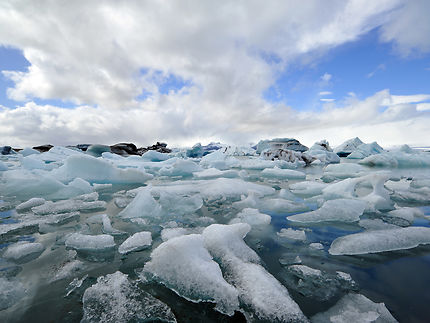 Lagune glacière de Jökulsarlón
