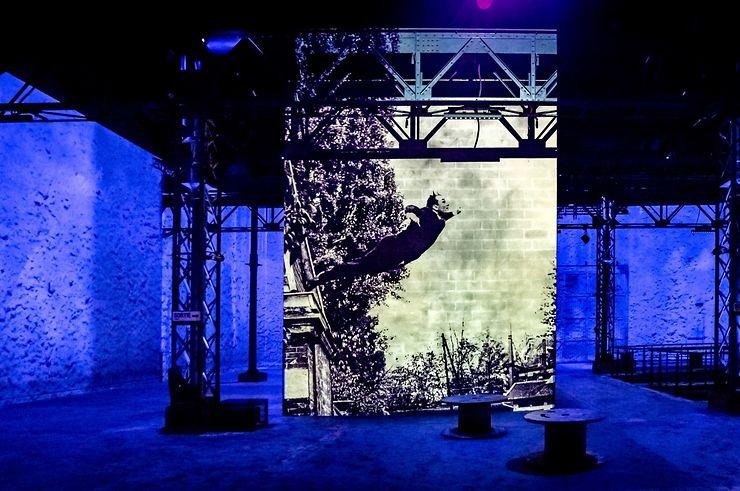 « Yves Klein, l'infini bleu » à l'Atelier des Lumières à Paris