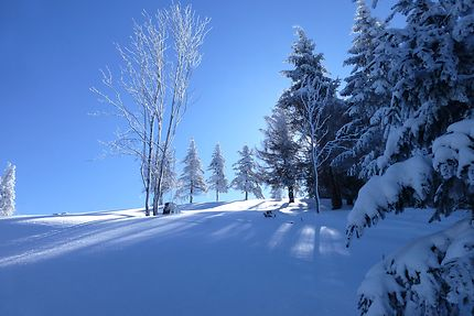 Paysage d'hiver au Markstein