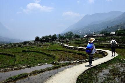Marche dans les rizières