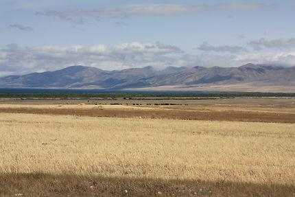 Au loin le lac Sevan