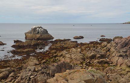 île d'Yeu, entre les rochers