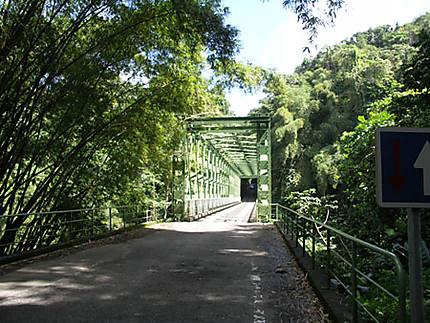 Pont sur la route de Grand Rivière