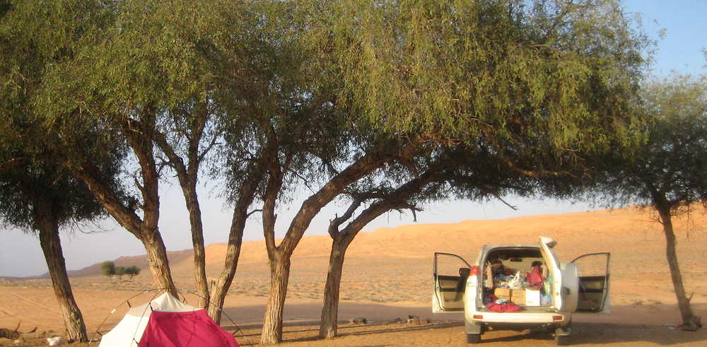 Deux 2 semaines en 4x4 et camping en Oman, mars 2014