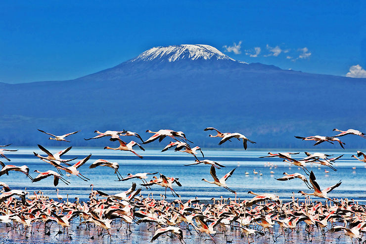 Mont Kilimandjaro - Tanzanie