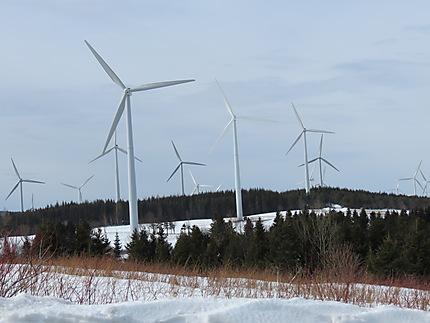 Éoliennes à Cap-Chat