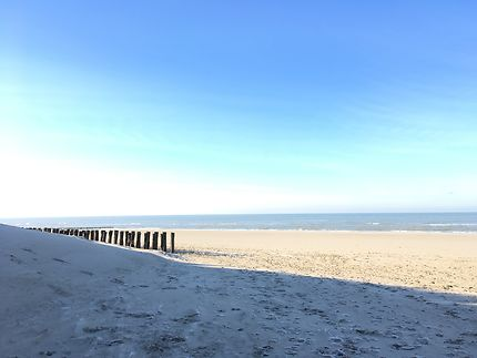 Les dunes en hiver