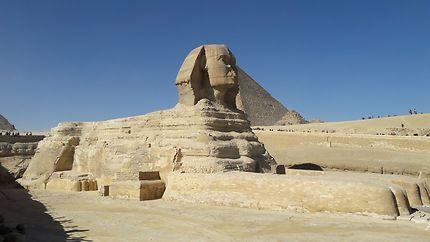 Le Sphinx à côté des pyramides