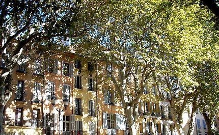 L'automne à Aix en Provence