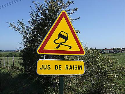 Vendange en Gironde