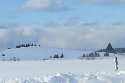 Paysage d'hiver à Luceville