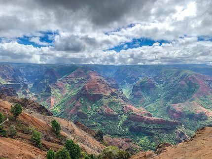 Le canyon Hawaïen