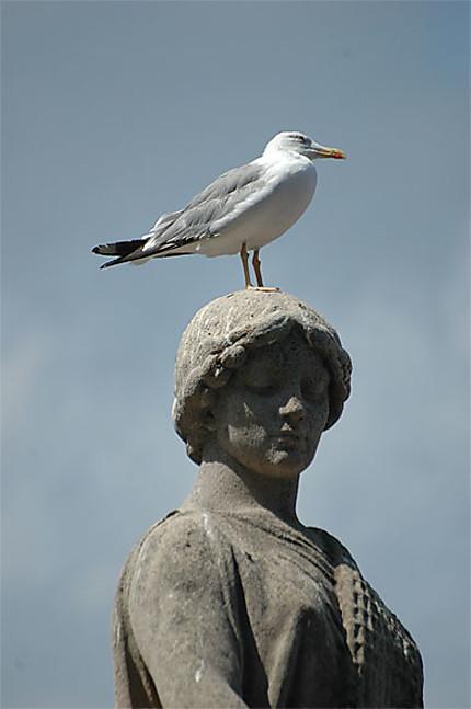 Statue et oiseaux