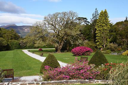 Jardin irlandais