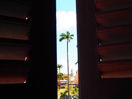 À l'ombre à Cayenne