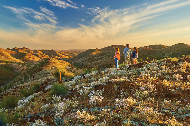 Yacca Lookout, Willow Springs Station, Flinders Ranges, Australie du Sud