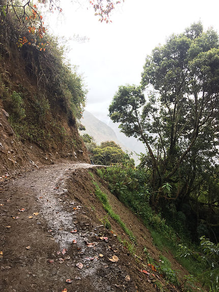 Sur la route du Machu Picchu, Pérou