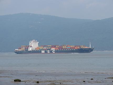 Porte Container à L'Île-aux-Coudres