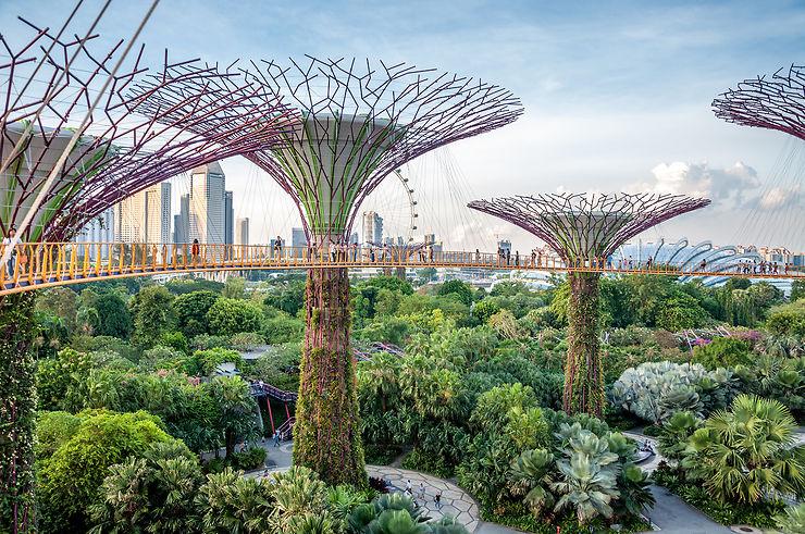 Le jardin extraordinaire de Singapour