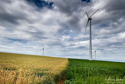 Parc éolien de Pont-à-Celles (Hainaut)