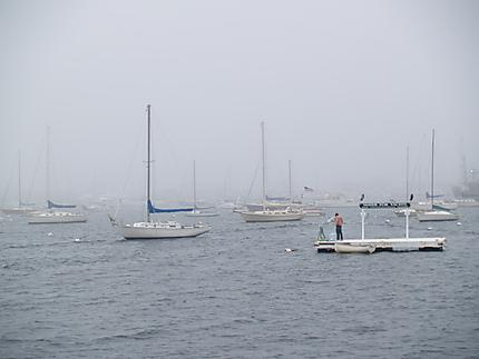 Baie de Newport