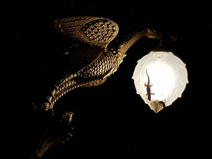 Lampadaire with gecko