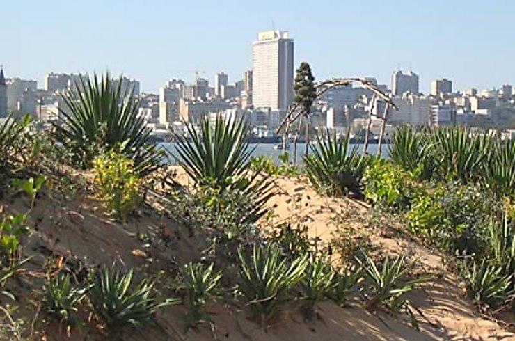 Maputo, l'Afrique mosaïque