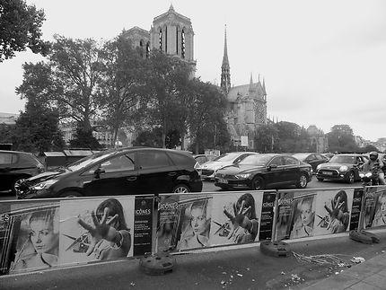 Cathédrale Notre-Dame de Paris, tristesse