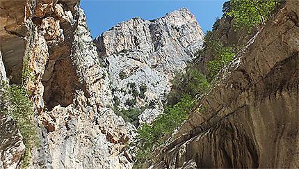 Canyon et falaises calcaires