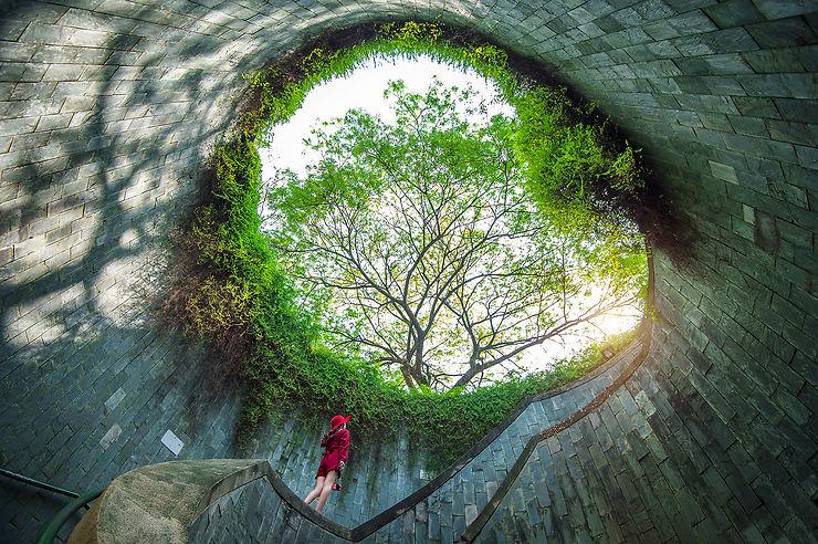 Singapour Upriver : d'Orchard Road aux Botanic Gardens