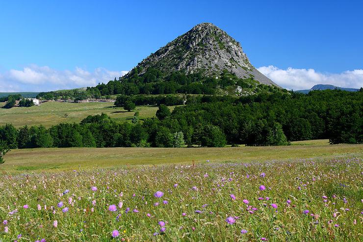 Le mont Gerbier-de-Jonc, aux sources de la Loire