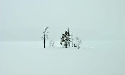 Le silence blanc dans les environs d'Inari