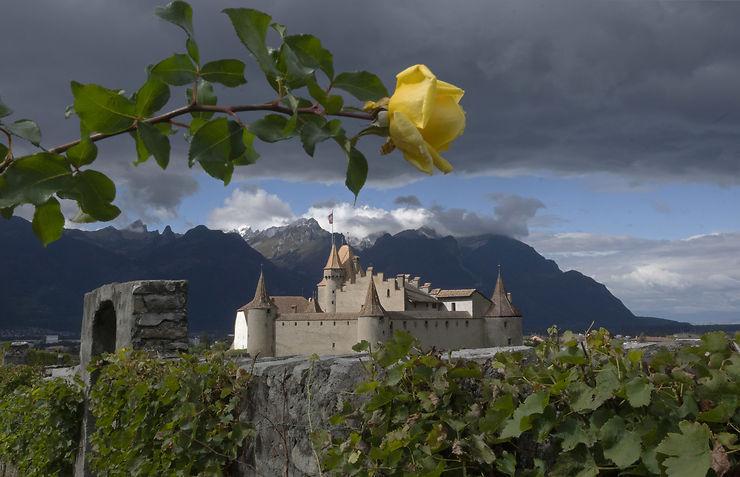 Château de Aigle, Suisse
