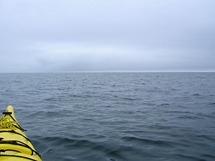 Le souffle des baleines au loin dans la nuit