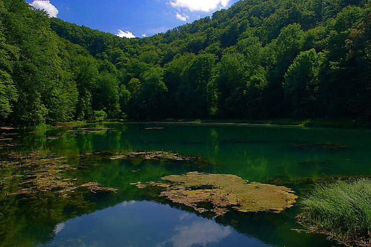 Croatie - Le parc naturel de Papuk classé à l'Unesco