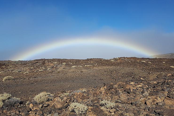 Tenerife, à visiter en toute saison