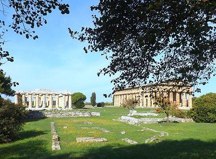 Les Temples de Paestum