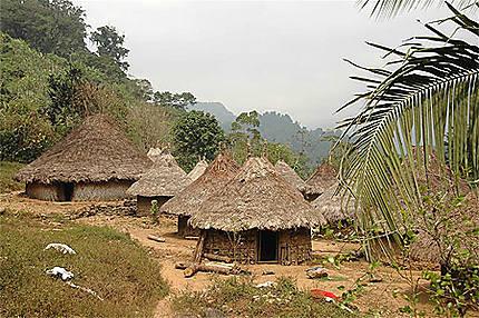 Village Kogui