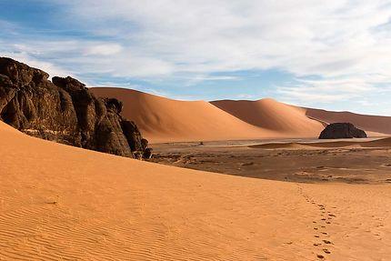 Tin Zaouaten - Le désert s'éveille