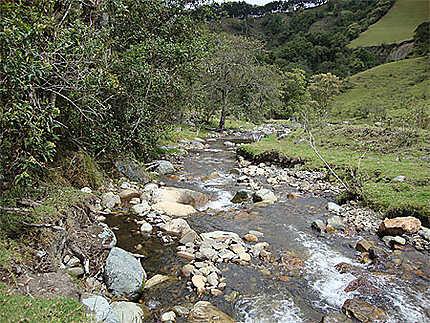 Ruisseau de Cocora