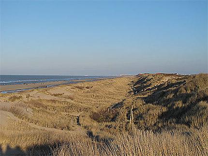 Dunes à De Haan