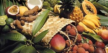 Voyage sur mesure gastronomique - La Réunion