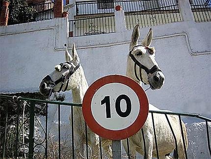 Fêtes de Mules