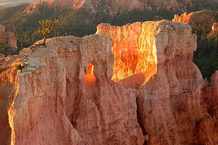 Lever de soleil à Bryce Canyon