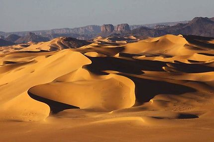 Les désert algérien