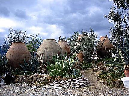 Jarres pour Huile d'Olive
