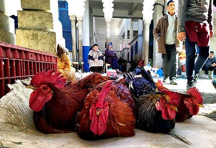 Larache centre ville marché